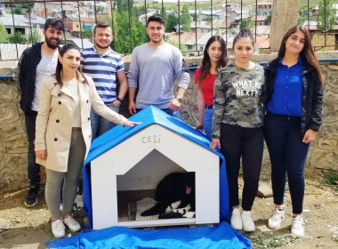 Öğrenciler Köpeğe Sahip Çıktı